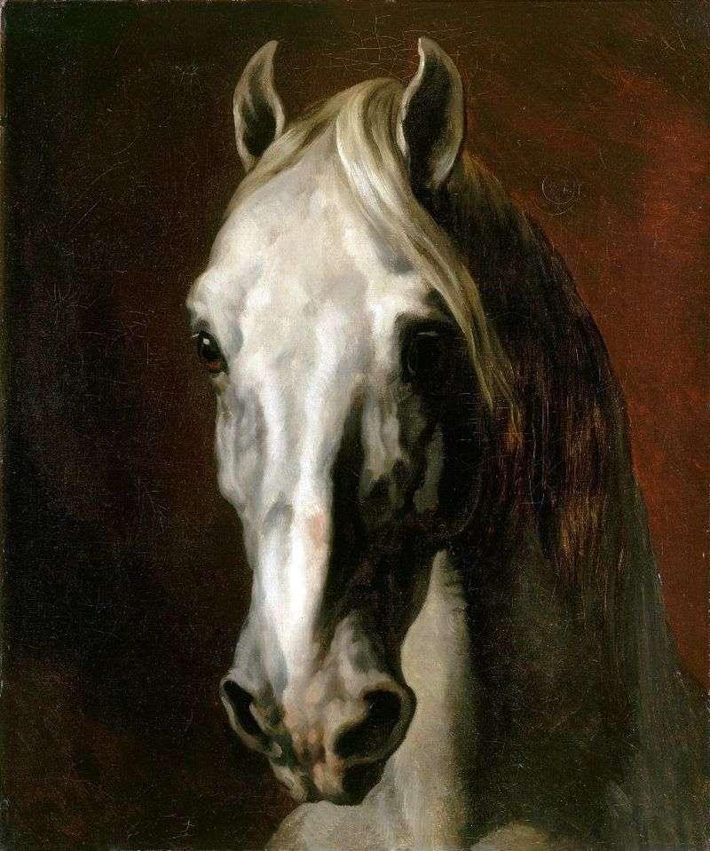Голова білого коня   Теодор Жеріко