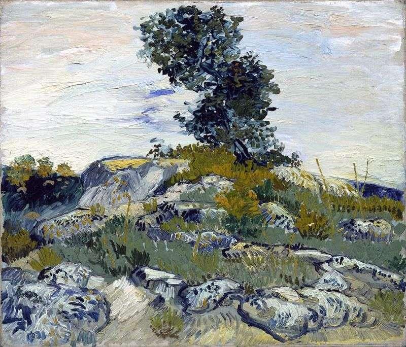 Валуни і дуб   Вінсент Ван Гог