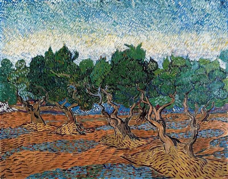 Оливковий гай IV   Вінсент Ван Гог