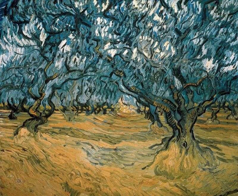 Оливкові дерева   Вінсент Ван Гог