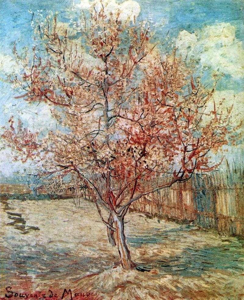Персик цвітіння   Вінсент Ван Гог