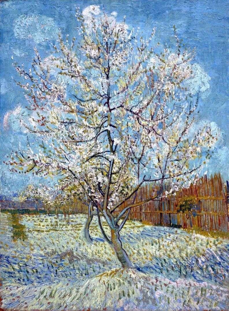 Персикове дерево в цвіту   Вінсент Ван Гог