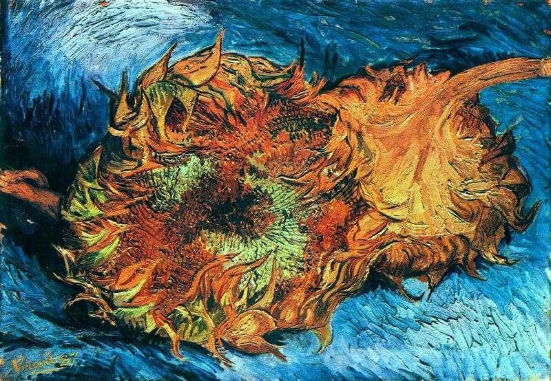 Соняшники. Два зрізаних соняшнику   Вінсент Ван Гог