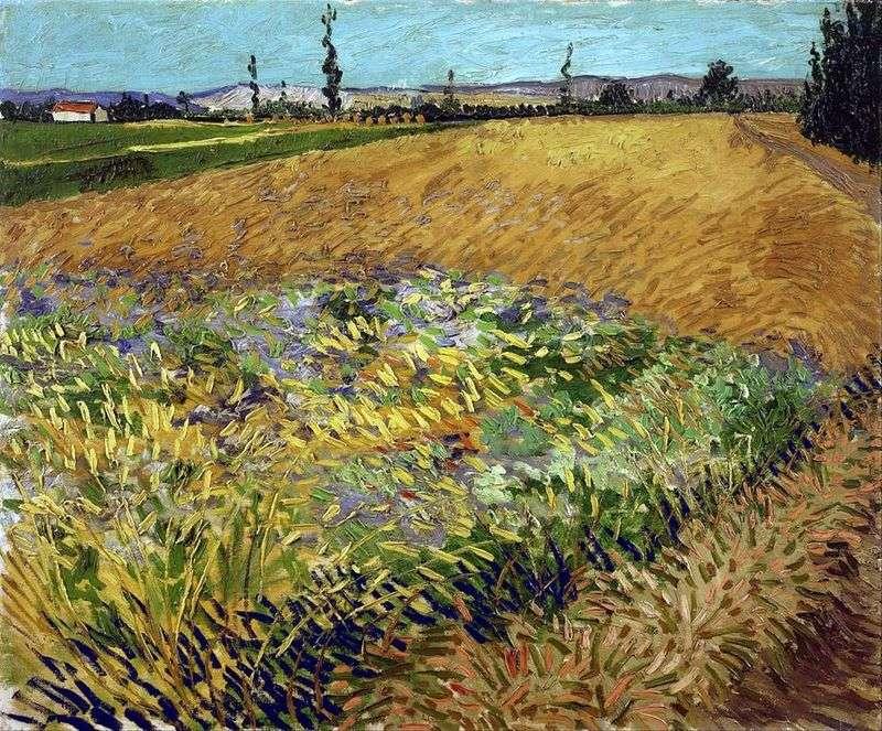 Пшеничне поле і передгіря Старих Альп на задньому плані   Вінсент Ван Гог
