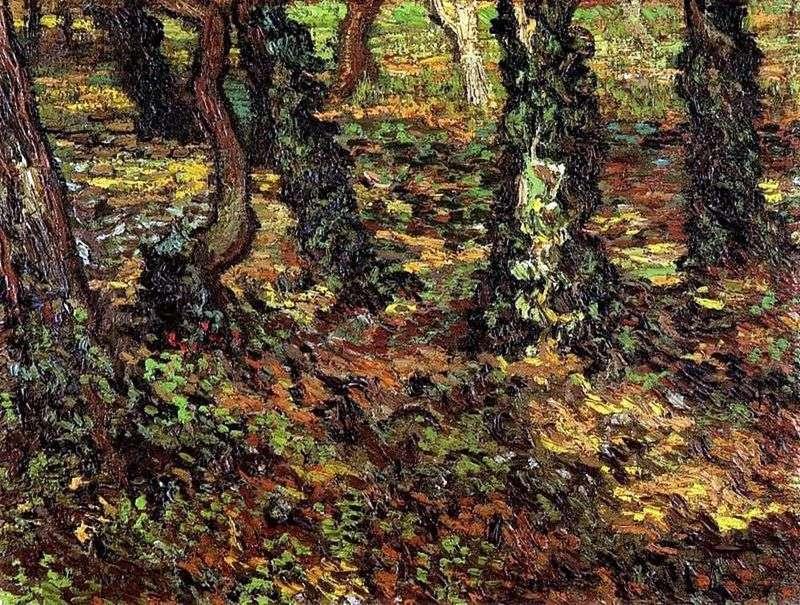 Стовбури дерев з плющем   Вінсент Ван Гог