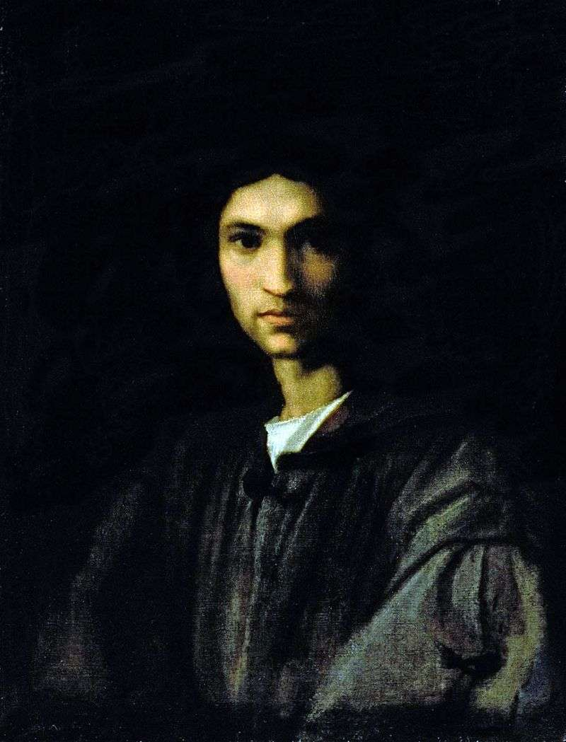 Портрет молодої людини   Андреа дель Сарто