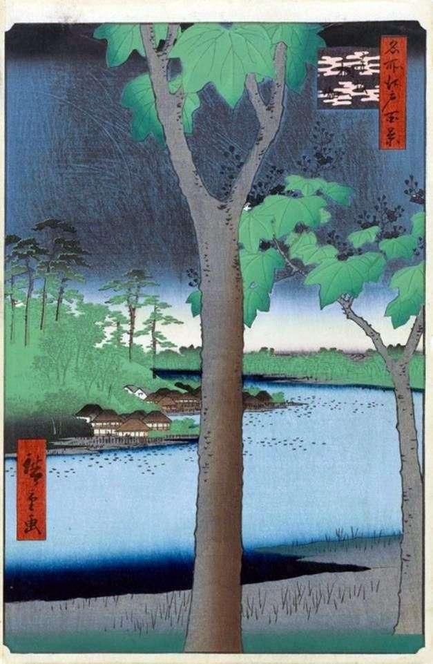 Акасака, Плантація павловний   Утагава Хиросигэ