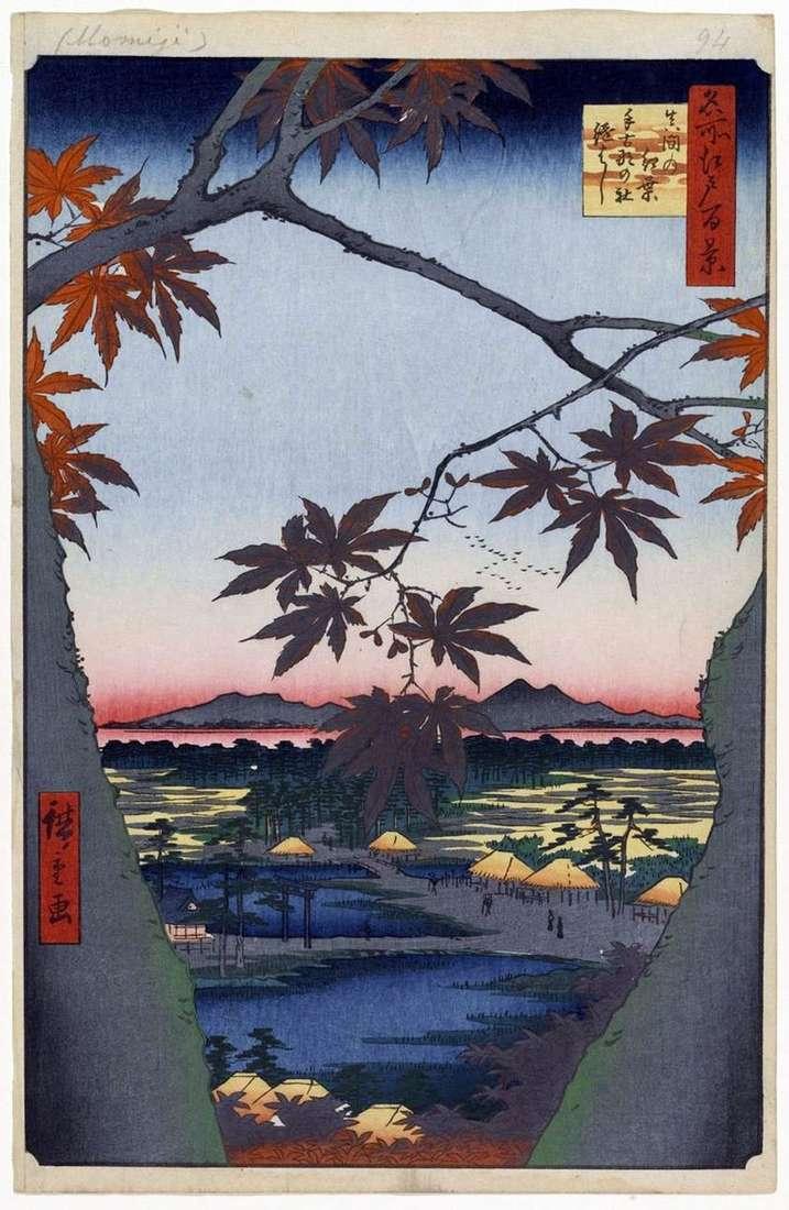 Червоні клени в Мама біля святилища Тэкона але ясіро і міст Цугихаси   Утагава Хиросигэ