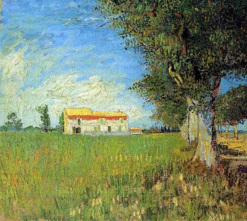 Фермерський будинок на пшеничному полі   Вінсент Ван Гог