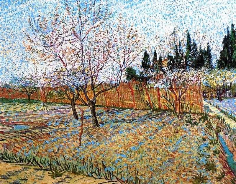 Фруктовий сад з квітучими персиками   Вінсент Ван Гог