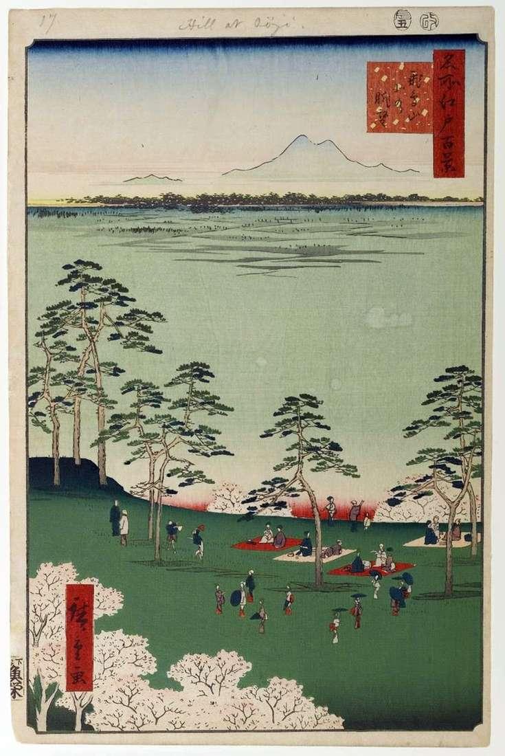 Вид на північ від гори Асукаяма