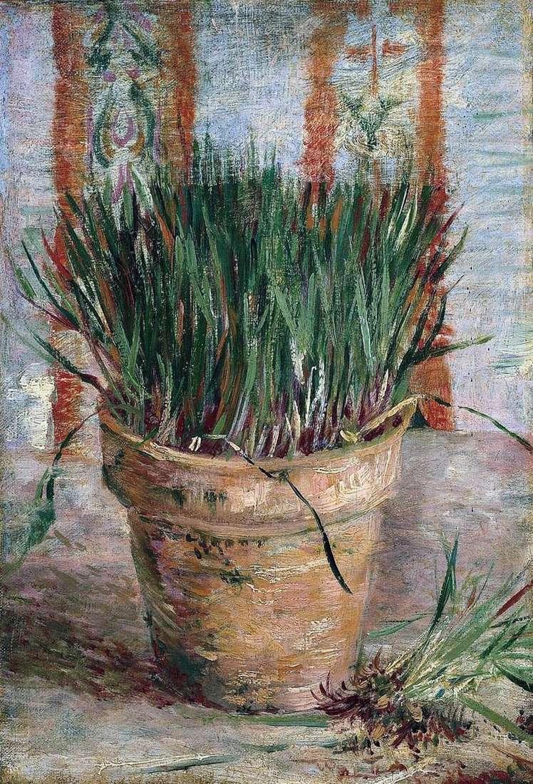 Квітковий горщик з цибулею   Вінсент Ван Гог