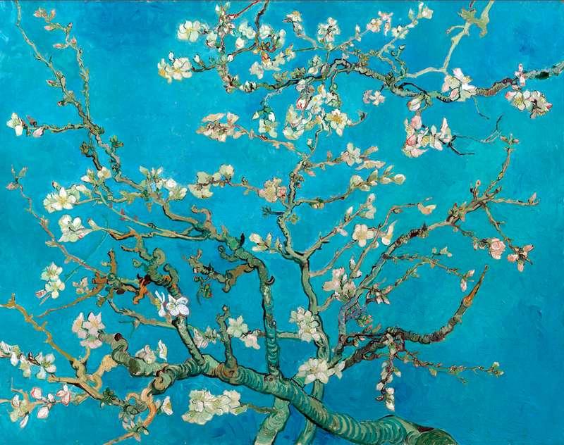 Квітучі гілки мигдалю   Вінсент Ван Гог