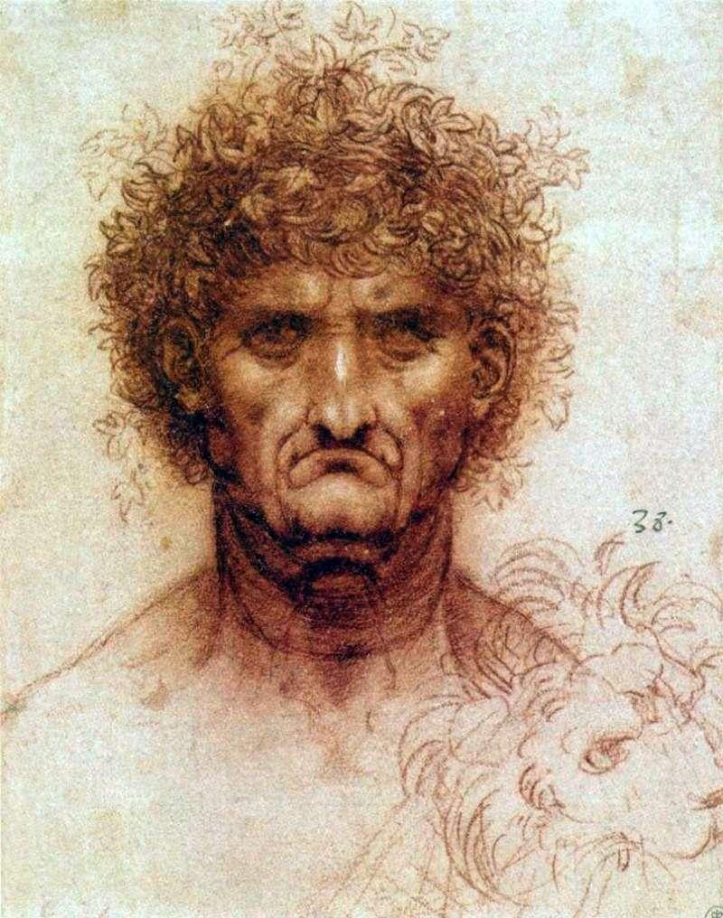 Голова людини і лева   Леонардо да Вінчі