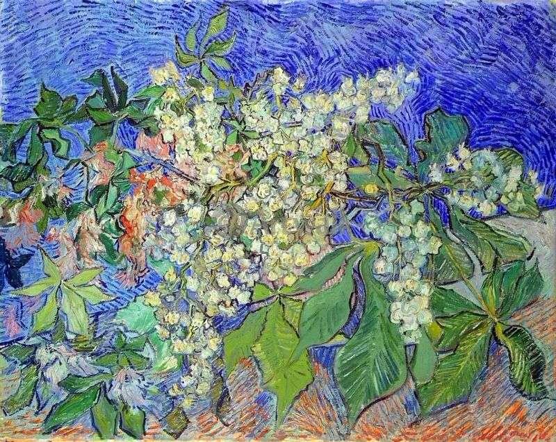 Квітучі каштанове гілля   Вінсент Ван Гог