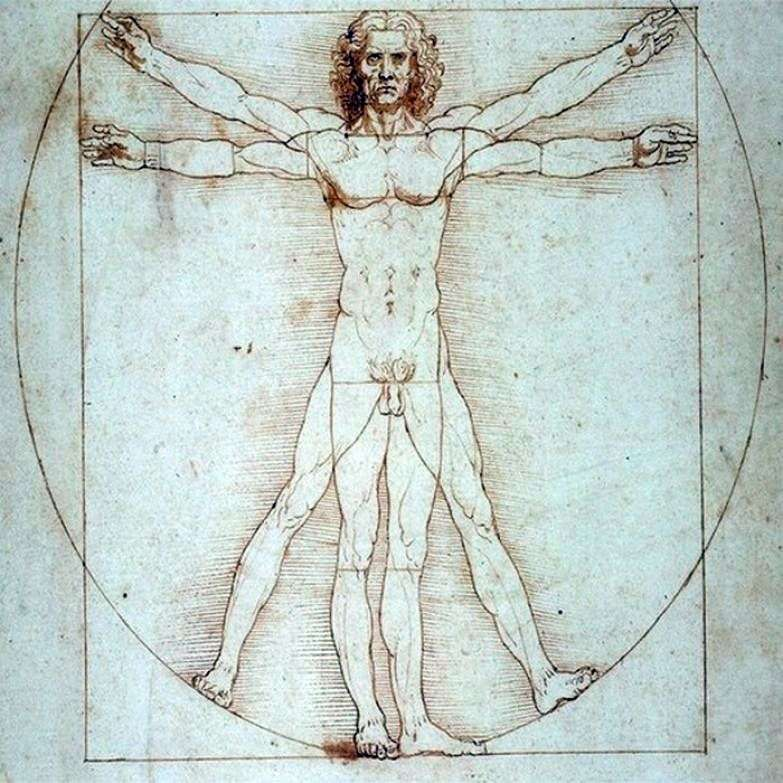 Вітрувіанська людина   Леонардо да Вінчі
