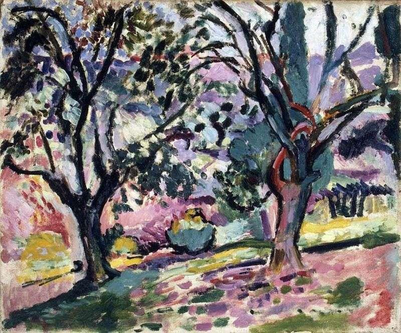 Дерева оливи в цвіту   Анрі Матісс