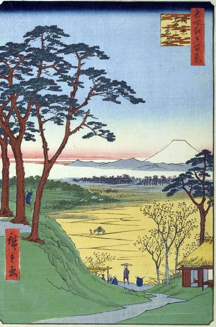 Чайна Дзидзигатяя (Дідусева лавка) в Мэгуро   Утагава Хиросигэ
