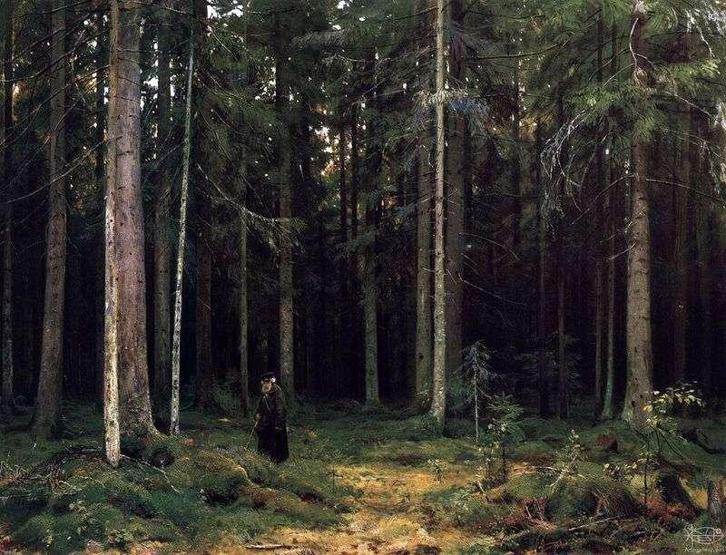 У лісі графині Мордвинова. Петергоф   Іван Шишкін
