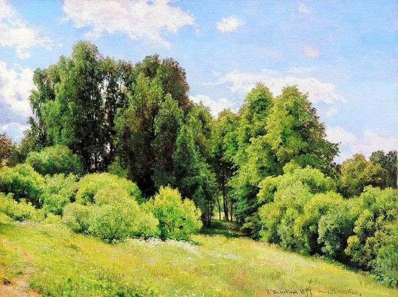 Лісова поляна  (Поляна)   Іван Шишкін