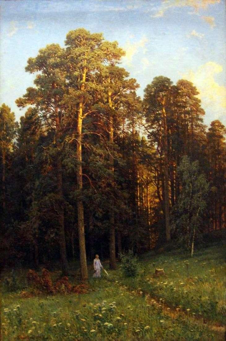 На узліссі соснового лісу   Шишкін