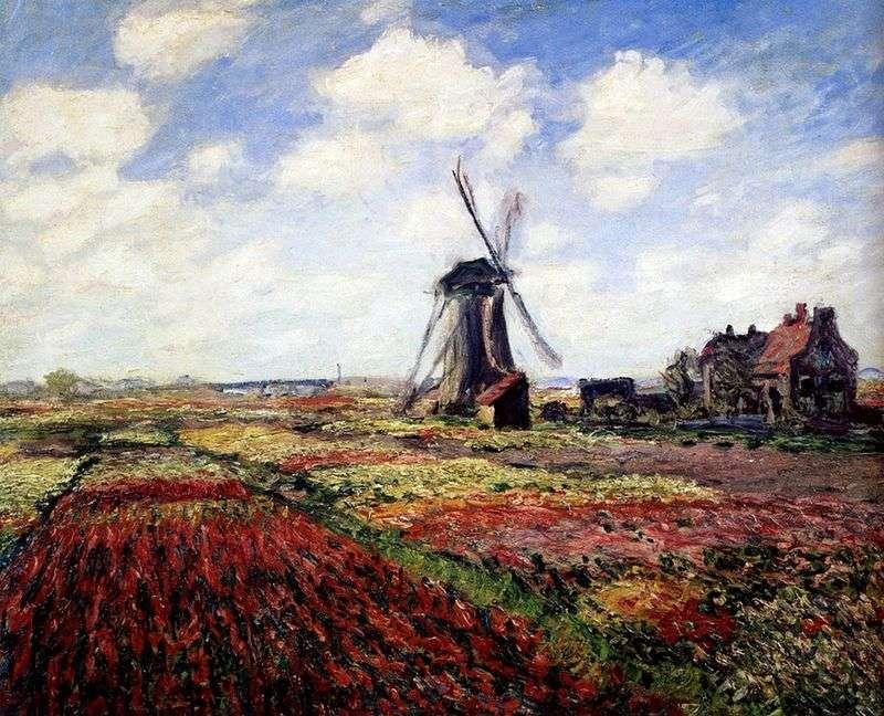Тюльпани Голландії   Клод Моне